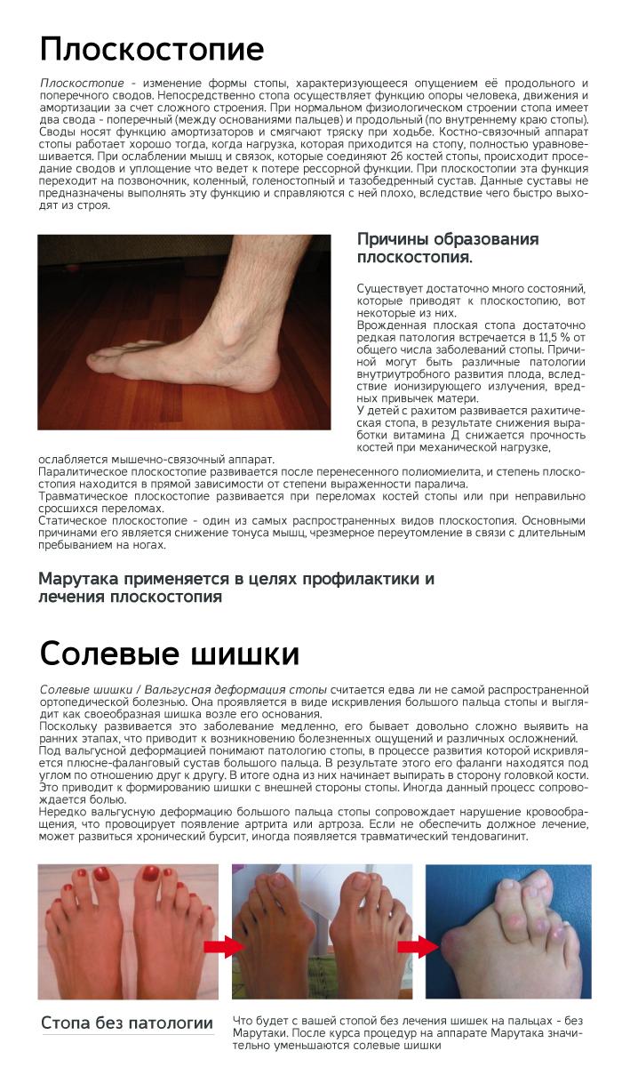 Knigka_sait_marutaka2